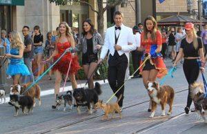 The Bachelor: Arie Luyendyk Episode 3 Recap